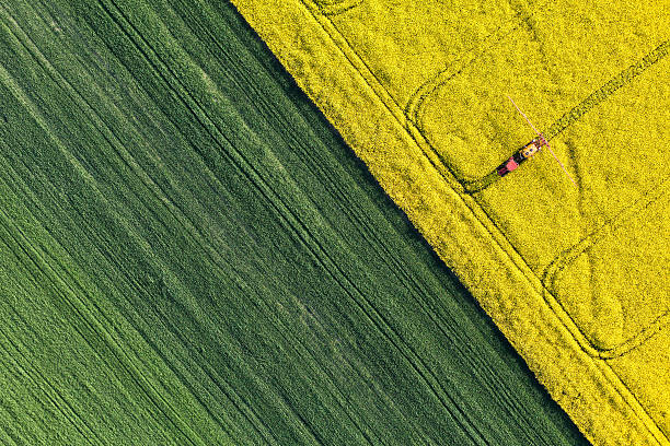 aerial view of harvest fields with tractor aerial view of harvest fields with tractor in Poland cultivated land stock pictures, royalty-free photos & images