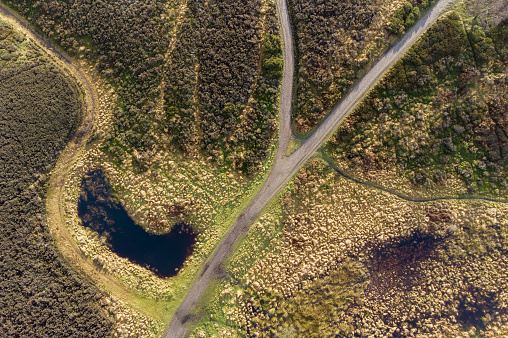 Aerial view of heathland at Cannock Chase, AONB