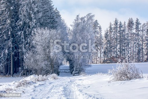 istock Aerial view of highland landscape 1303808348