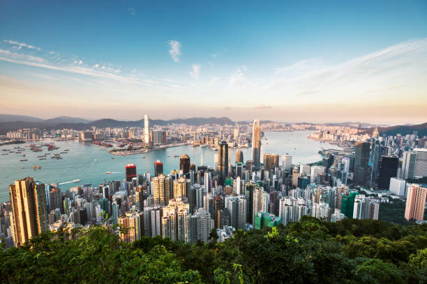 aérea vista de hong kong - hong kong fotografías e imágenes de stock