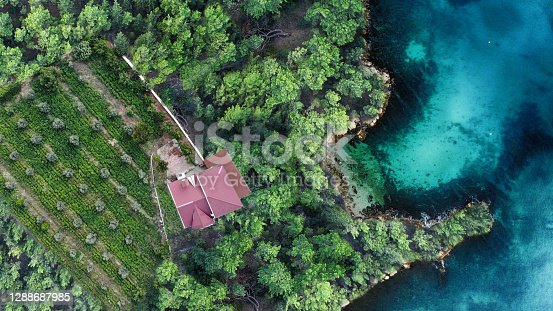 Aerial view of house in forest and the ocean