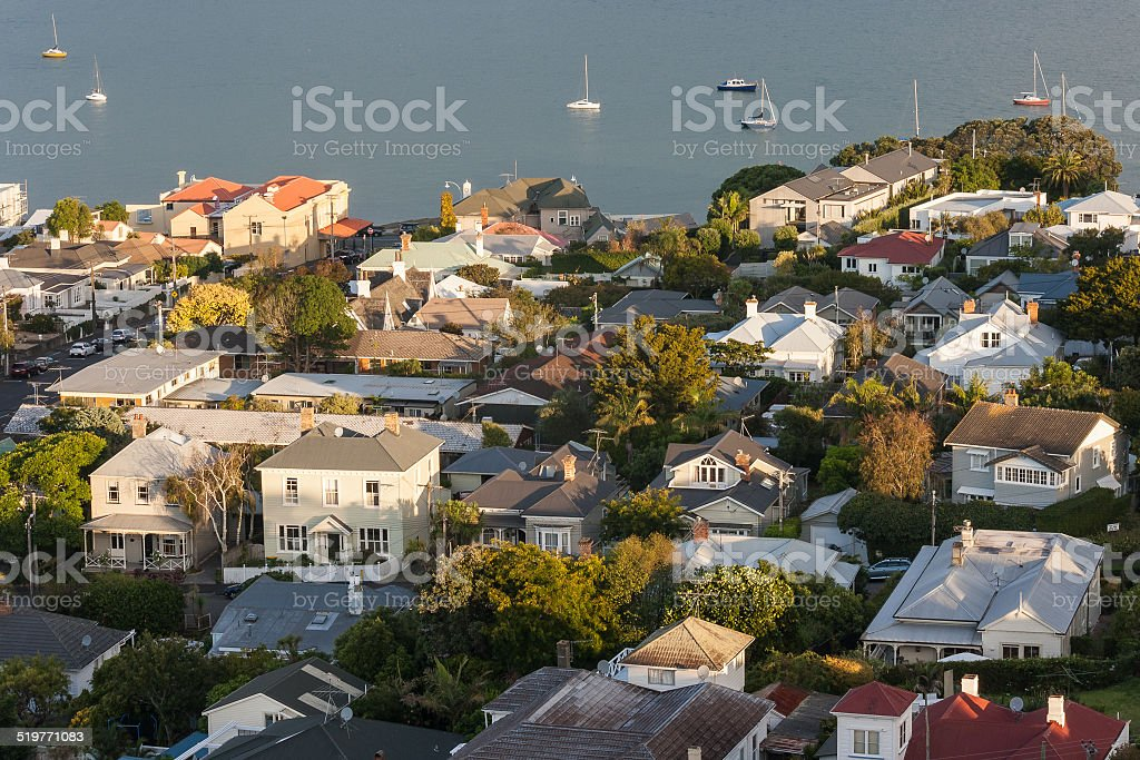 aerial view of houses in Devonport, New Zealand stock photo