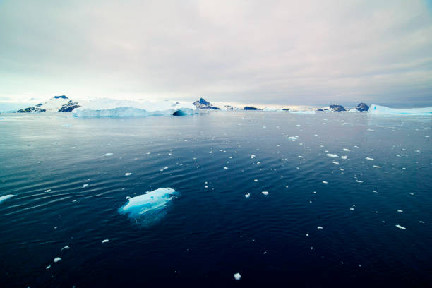 Aerial view of icebergs in Antarctica Aerial view of icebergs in Antarctica ice floe stock pictures, royalty-free photos & images