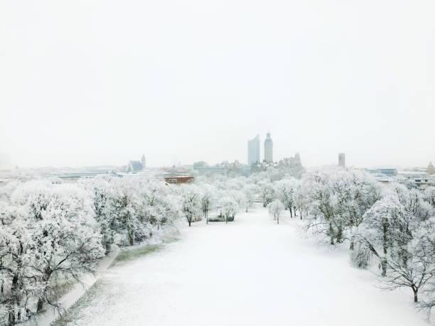 luftaufnahme der johannapark und stadtbild von leipzig - leipzig universität stock-fotos und bilder