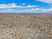 Aerial view of Joshua Tree National Park. American national park in southeastern California. Panoramic view of Arid desert.