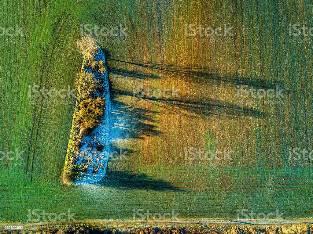 Aerial view of landscape with trees and field in winter stock photo