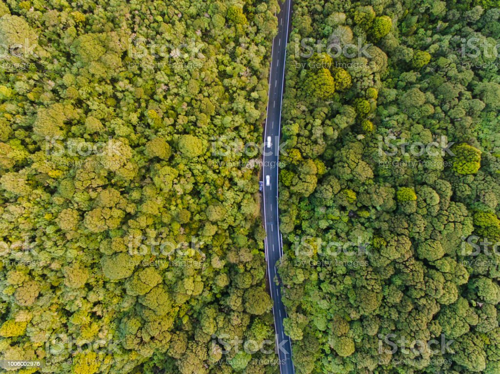 Aerial view of long road cutting through forest. stock photo