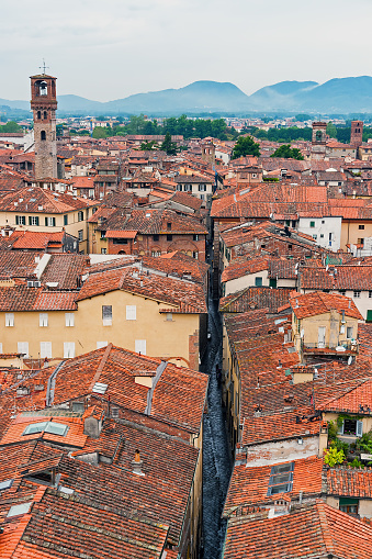 istock Aerial view of Lucca, seen from the top of the Torre Guinigi - Tuscany, Italy 873519768