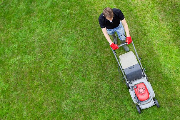 vue aérienne de l'homme sur une pelouse verte avec tondeuse à gazon manuelle - pelouse photos et images de collection