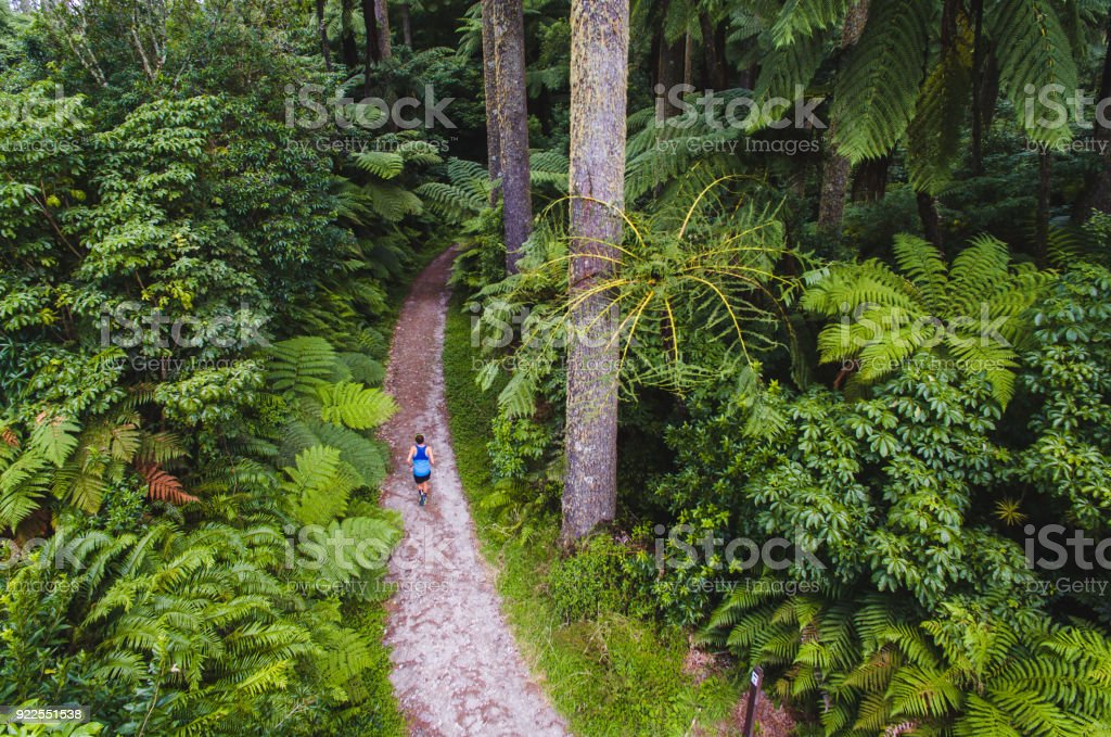 Aerial view of man running through wood. stock photo