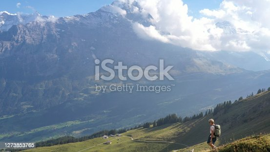Swiss Alps in distance