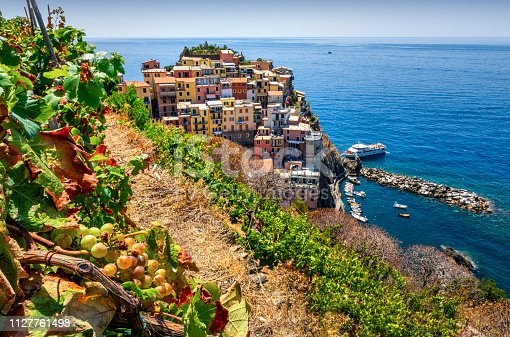 Aerial view of Manarola surrounded by vineyards. Cinque Terre National Park. Liguria. Itayl