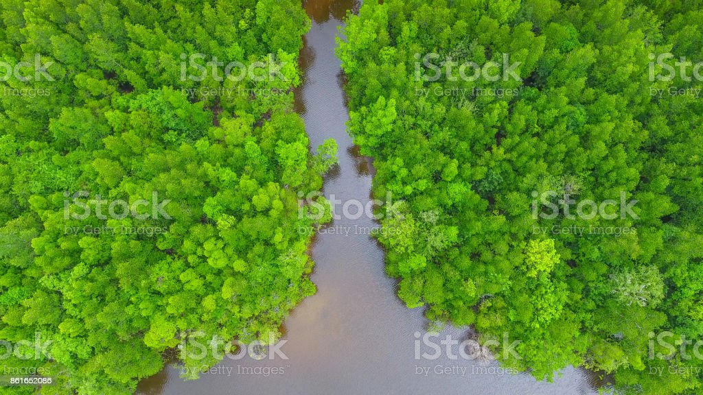 Aerial view of mangrove forest and sea at trang province, Thailand , stock photo