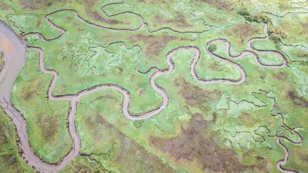 aerial view of marshland - estuário imagens e fotografias de stock