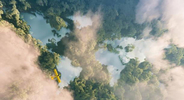 Luftaufnahme von n:0-Regenwaldseen in Form von Weltkontinenten in dichter Dschungelvegetation in schönem Spätabendlicht. 3D-Rendering – Foto