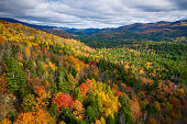 Aerial view of Mountain Forests in Autumn with Fall Colors in Adirondacks, New York, New England