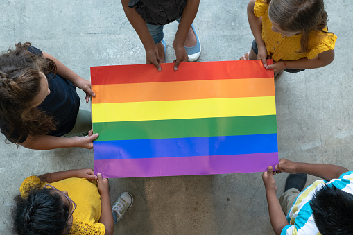 istock Aerial View of Multi-Ethnic Elementary Students Holding a Gay Pride Poster stock photo 1194794278