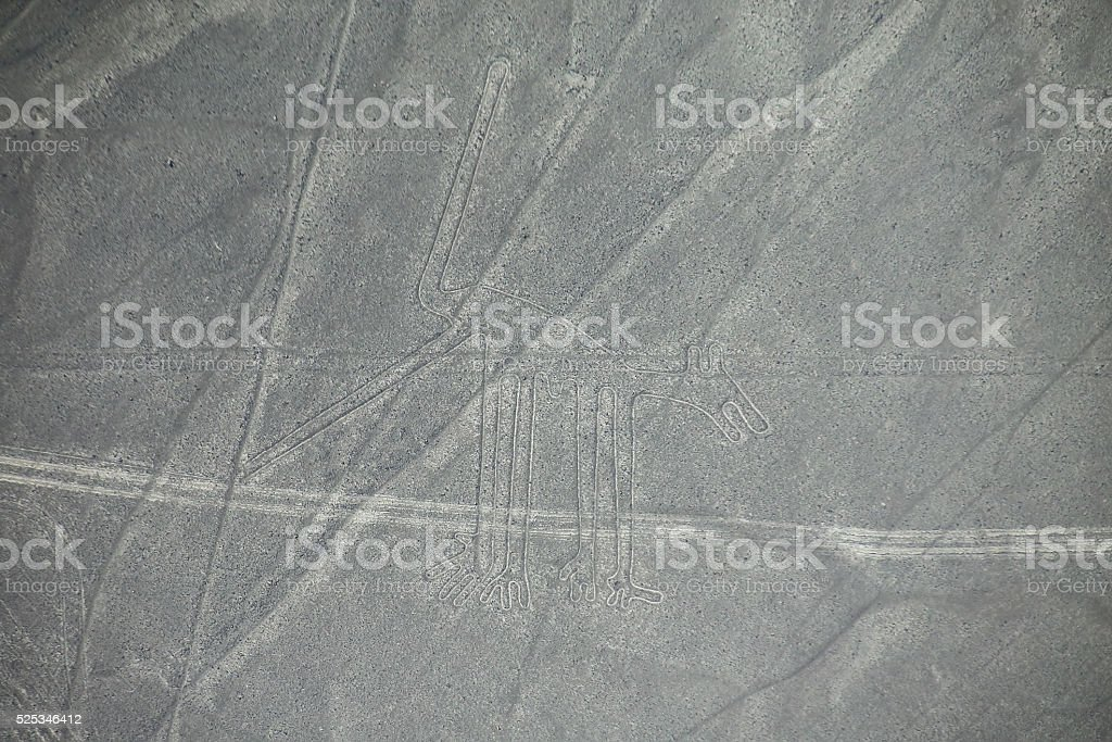 Aerial view of Nazca Lines - Dog geoglyph, Peru. stock photo