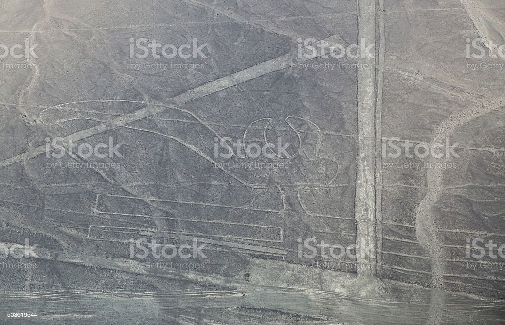 Aerial view of Nazca Lines - Parrot geoglyph, Peru. stock photo