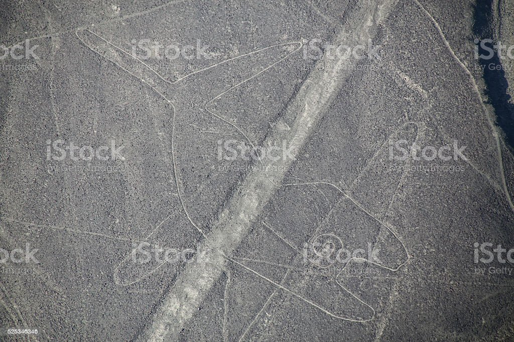 Aerial view of Nazca Lines -  Whale geoglyph, Peru. stock photo