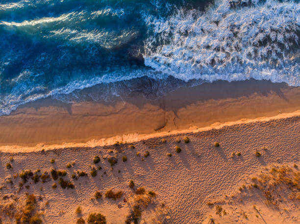 aerial view of north cottesloe beach at sunset. - western australia stock pictures, royalty-free photos & images