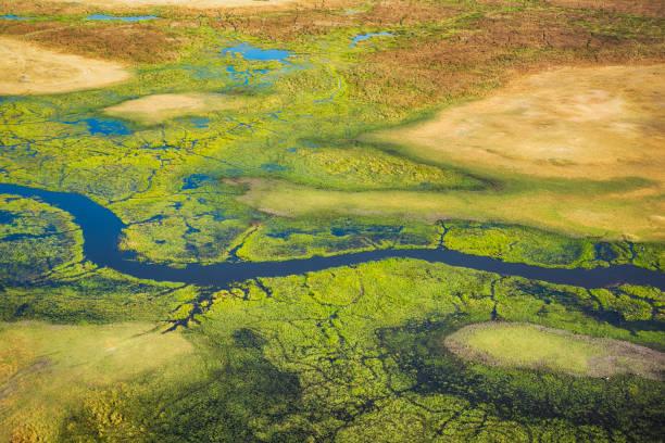 Aerial view of Okavango Delta, Botswana, Africa stock photo
