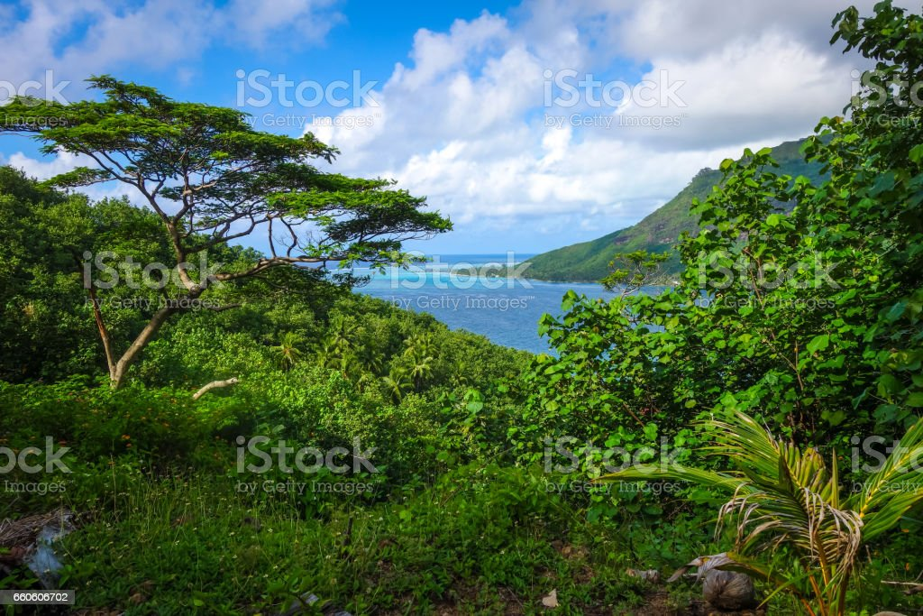 Aerial view of Opunohu Bay and lagoon in Moorea Island royalty-free stock photo