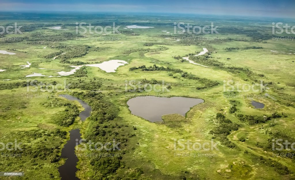 Luftaufnahme des Pantanal Sumpfgebiete, Pantanal, Brasilien – Foto