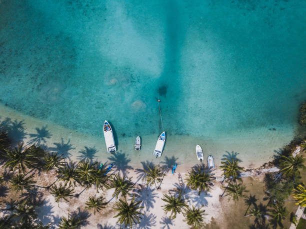 aerial view of paradise tropical beach with turquoise sea paradise tropical beach with turquoise sea water and palm trees, aerial drone top view beautiful landscape koh chang stock pictures, royalty-free photos & images