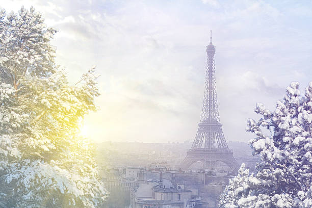 Aerial view of Paris cityscape with Eiffel tower at winter stock photo