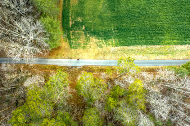 Aerial view of paved hiking trail in forest greenway in Atlanta stock photo