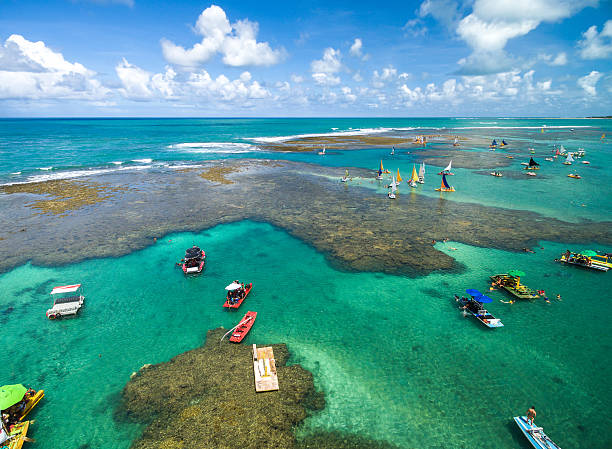 aerial view of porto de galinhas, pernambuco, brazil - reef stock pictures, royalty-free photos & images