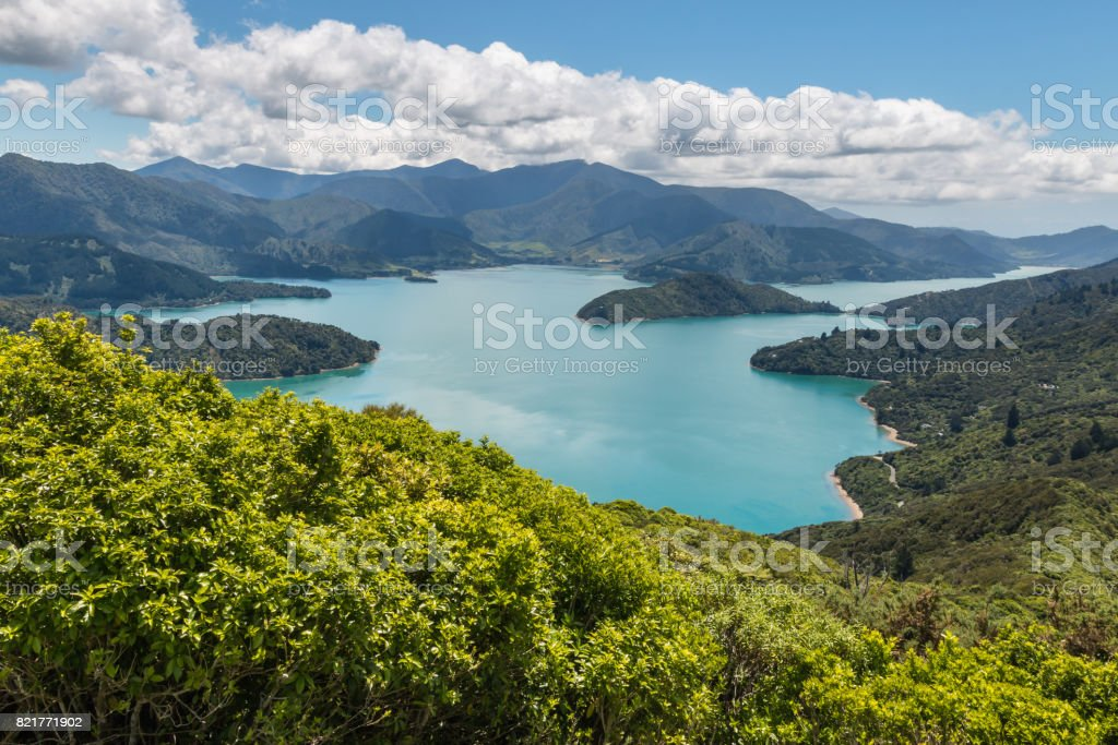 aerial view of Queen Charlotte Sound in Marlborough Sounds stock photo