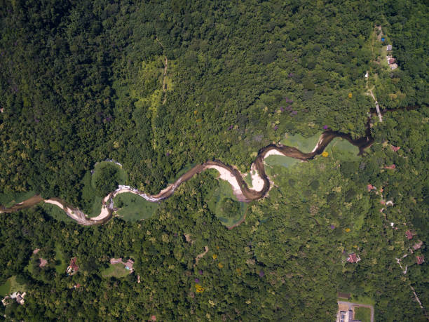 Aerial View of Rainforest in Brazil stock photo