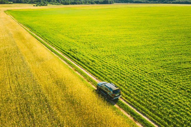 Aerial View Of Renault Duster Car SUV Parked Near Countryside Road In Spring Field Rural Landscape. Car Between Young Wheat And Corn Maize Plantation stock photo