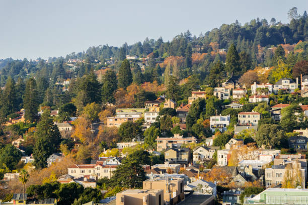 Aerial view of residential neighborhood, Berkeley, California Aerial view of residential neighborhood built on a hill on a sunny autumn day, Berkeley, San Francisco bay, California; alameda california stock pictures, royalty-free photos & images
