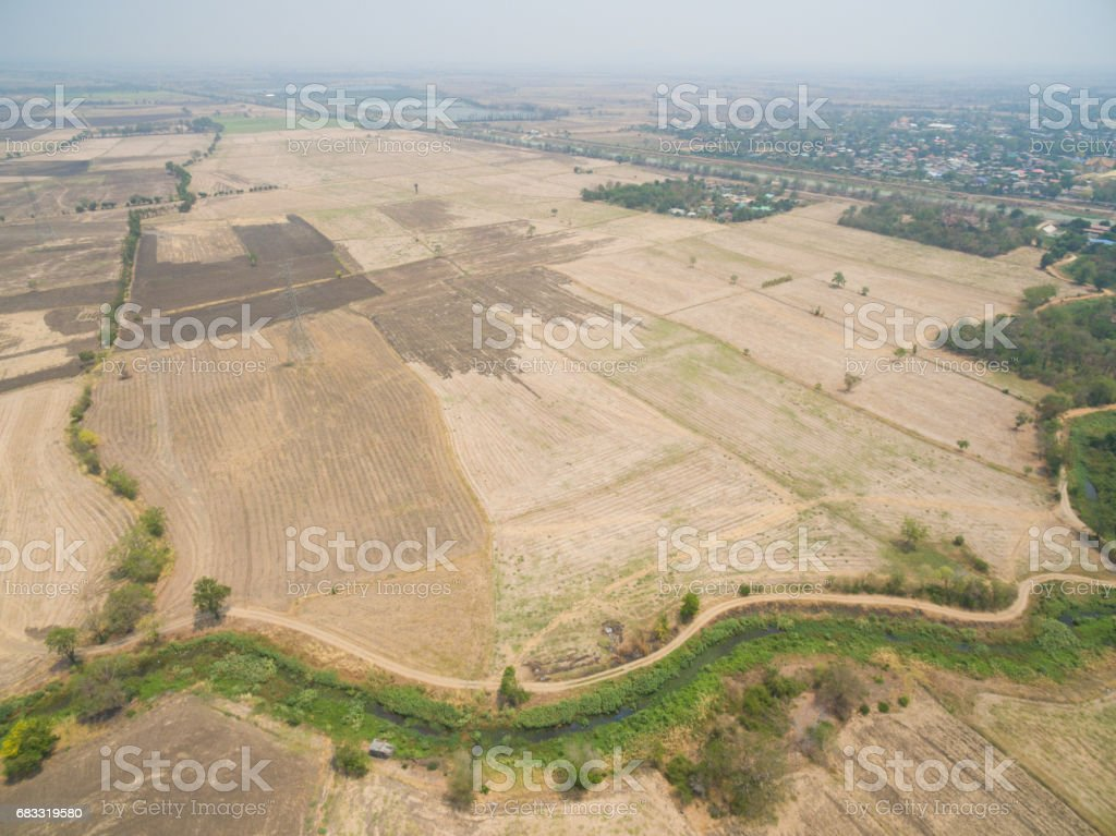 Aerial view of rice field in rural areas royalty-free stock photo