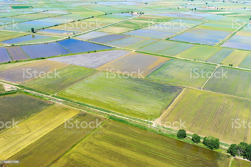 Aerial view of rice field terraces in Xalastra, Greece stock photo