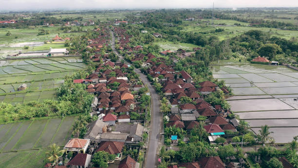 Aerial View Of Rice Fields Covered With Water And Village Bali Stock Photo Download Image Now Istock