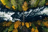 istock Aerial view of river with suspension bridge in colorful autumn forest in Finland. 1186094561