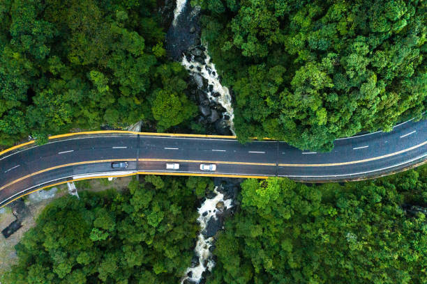 Aerial View of road in a forest Drone image overpass road stock pictures, royalty-free photos & images