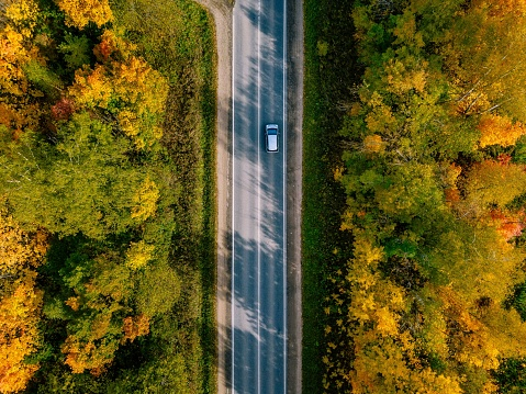 Aerial view of road in autumn forest. Beautiful landscape with  rural road, trees with green, red and orange leaves.