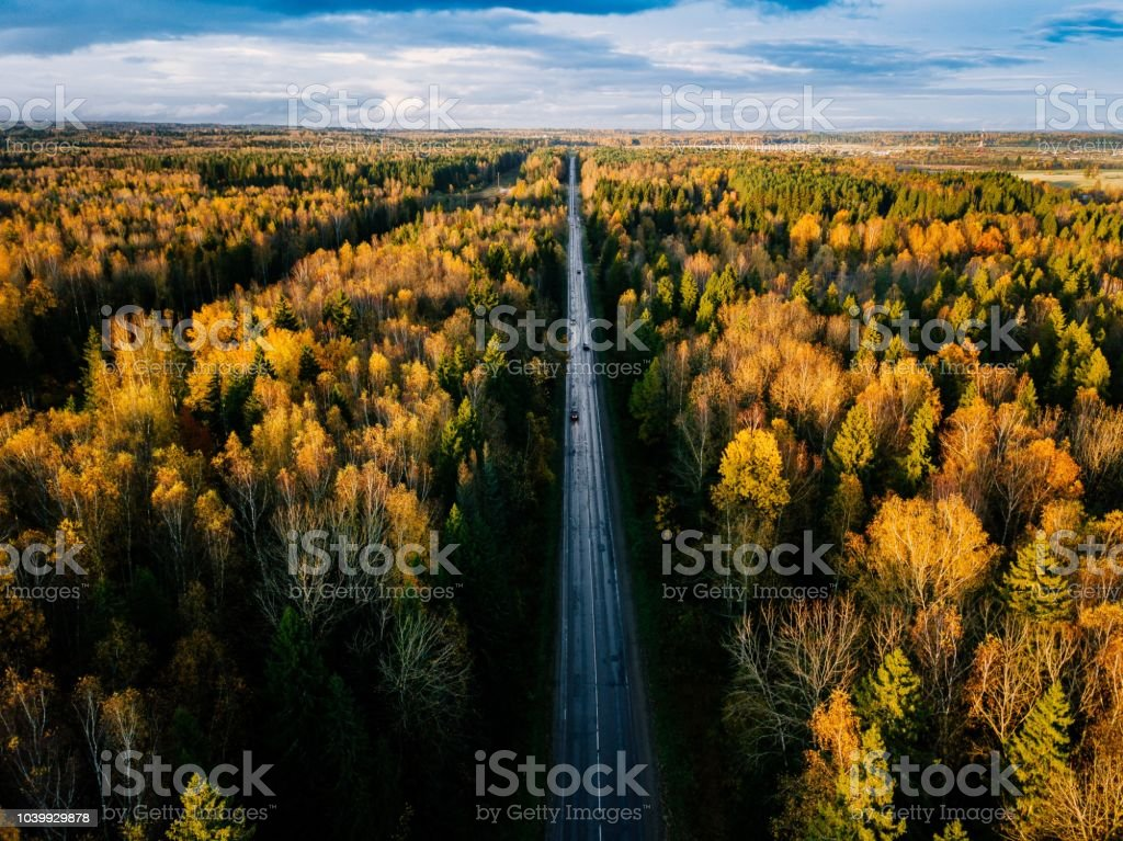 Aerial view of road in autumn forest. Fall landscape with road, red and yellow trees. stock photo