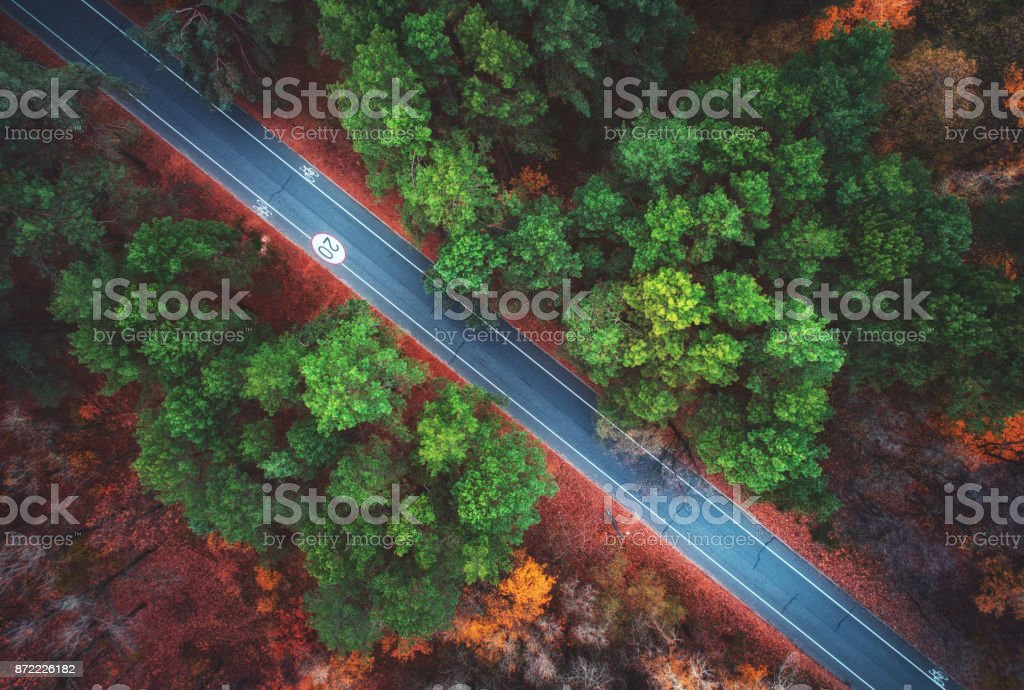 Aerial view of road in beautiful autumn forest. Amazing landscape with empty rural road, trees with green, red and orange leaves in day. Highway through the park. Top view from flying drone. Nature stock photo