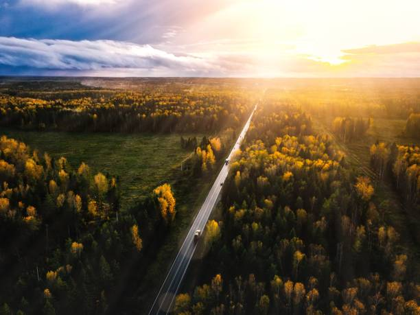 Aerial view of road in beautiful autumn forest at sunset in rural Finland. Aerial view of road in beautiful autumn forest at sunset in rural Finland. Beautiful landscape with rural road and trees with colorful leaves. sweden stock pictures, royalty-free photos & images