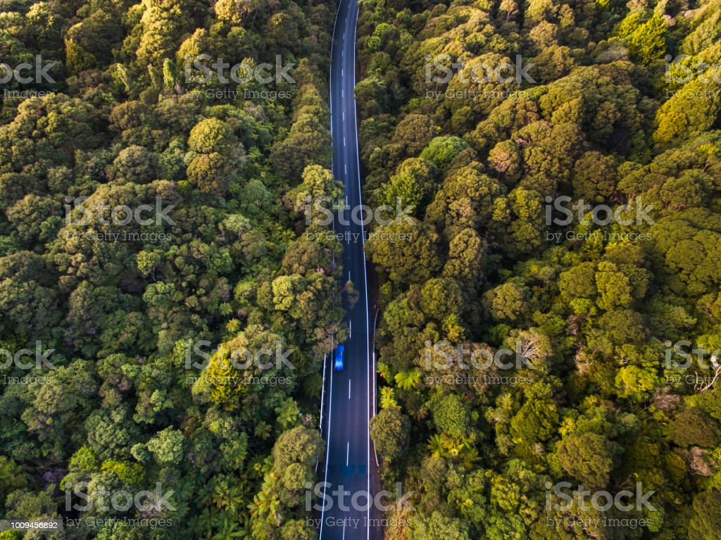 Aerial view of road passing through forest. stock photo