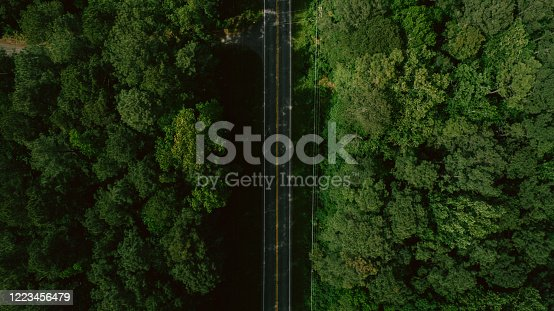 888361900 istock photo Aerial View of Road Through Forest in the Spring 1223456479