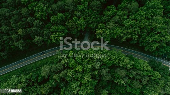 888361900 istock photo Aerial View of Road Through Forest in the Spring 1223456583