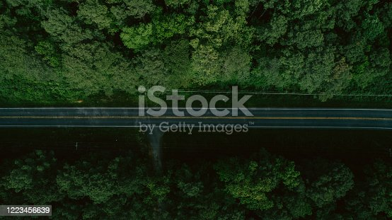 888361900 istock photo Aerial View of Road Through Forest in the Spring 1223456639