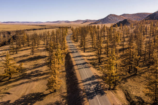 Aerial view of road through steppe at sunset stock photo